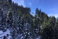 Ski- & Snowboardcamp 201603