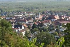 06_Wachenheim 29.09 (7)