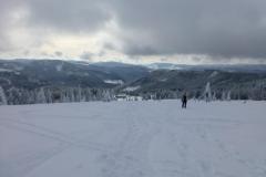 Schneeschuh201411